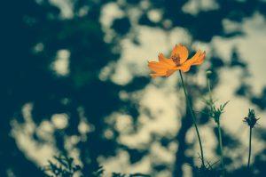 8 Ways to Stop Reacting & Start Responding